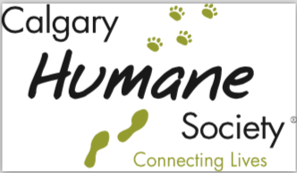 Party Your Paws Off At Calgary Humane Society For Next Birthday Our Standard Package Includes A Presentation Crafty Crafts Shelter Tour